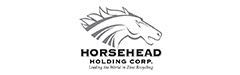 Chapter 11 restructuring for Horsehead Holding Corporation
